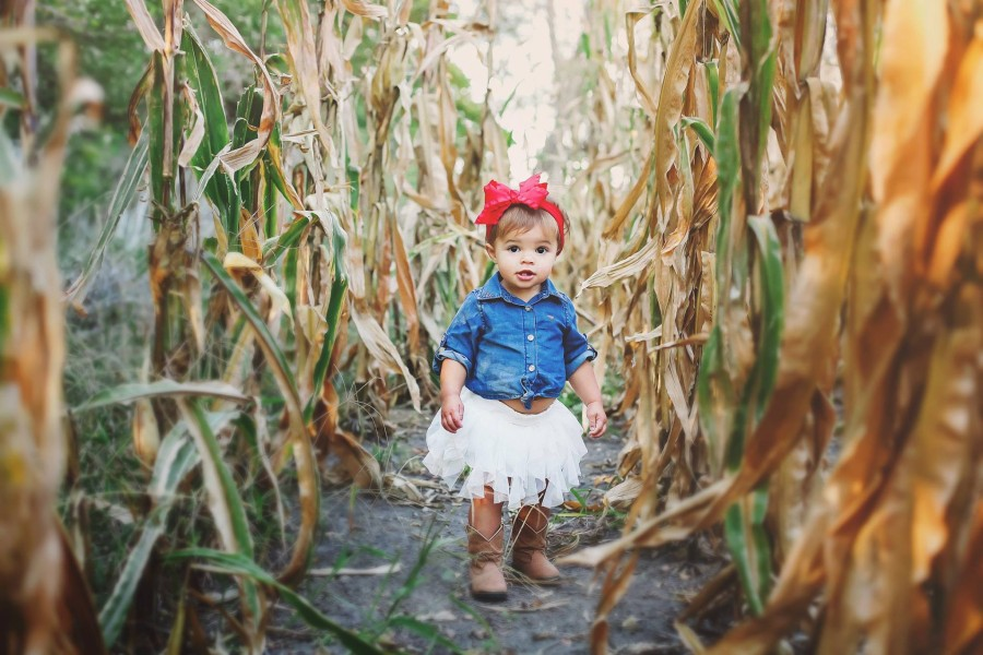 fall kid pictures