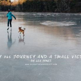 My 365 Journey and A Small Victory