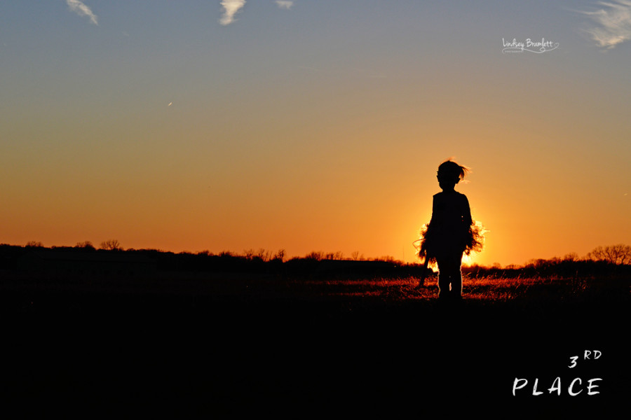 silhouette pictures, inspirational photography blog, weekly favorites