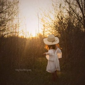 golden light pictures, daily fan favorite