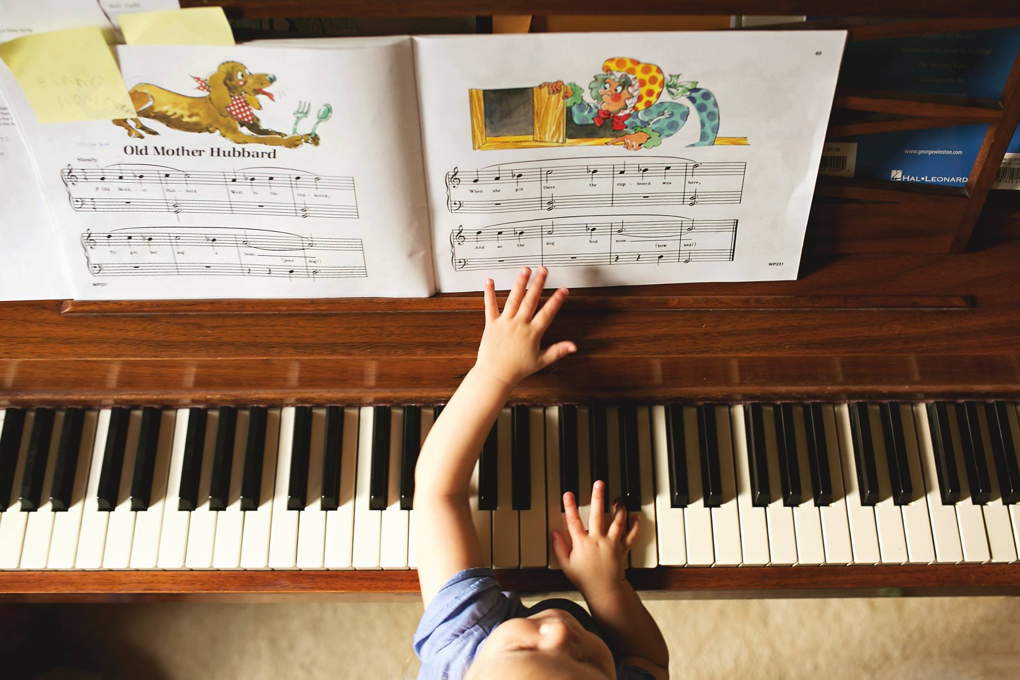 piano pictures, the daily story