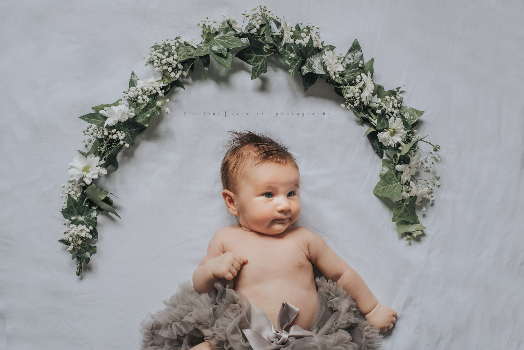 organic baby pictures, the daily story