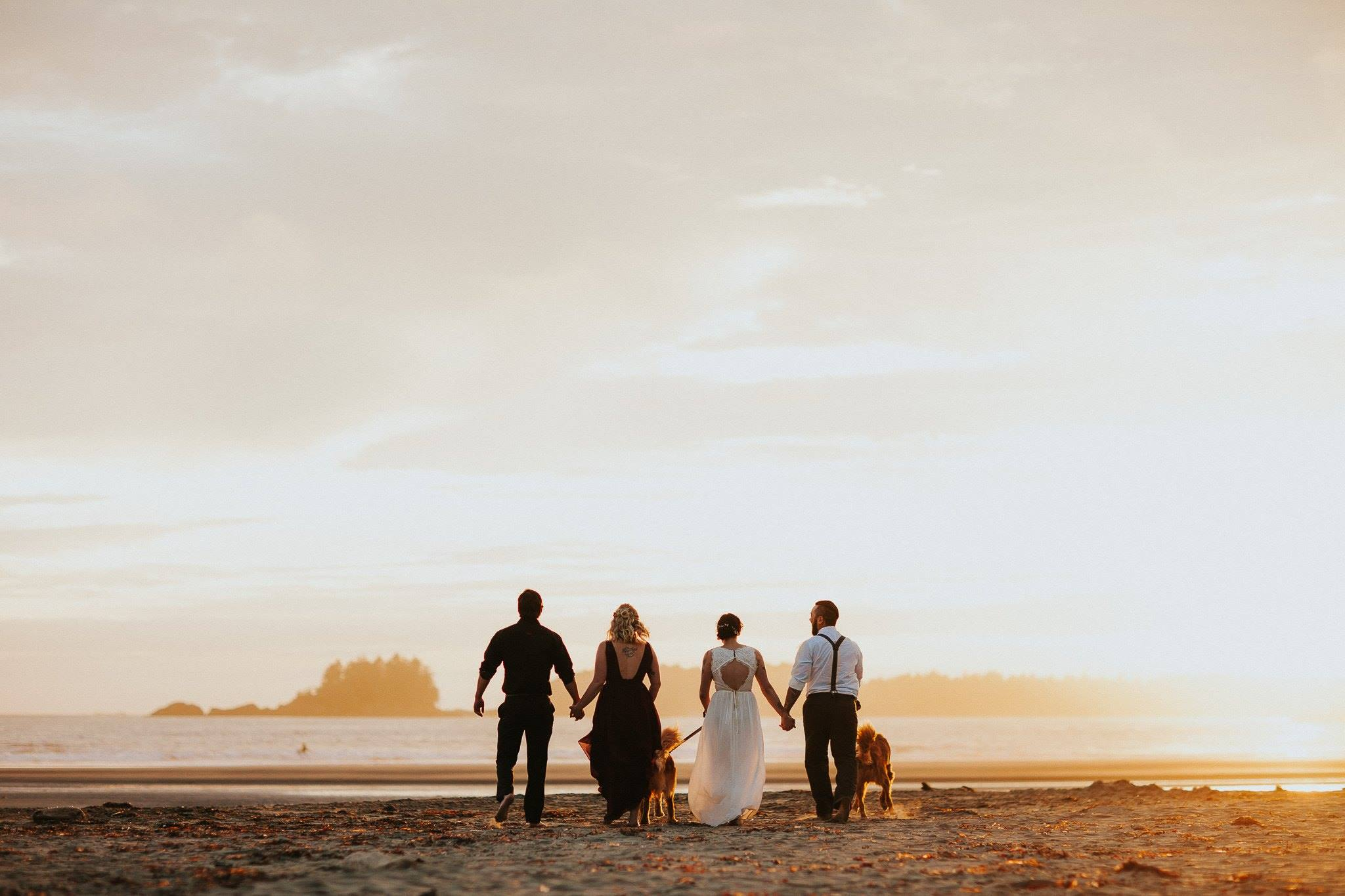 wedding pictures on the beach, the daily story