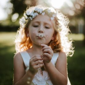 blowing flowers, the daily story