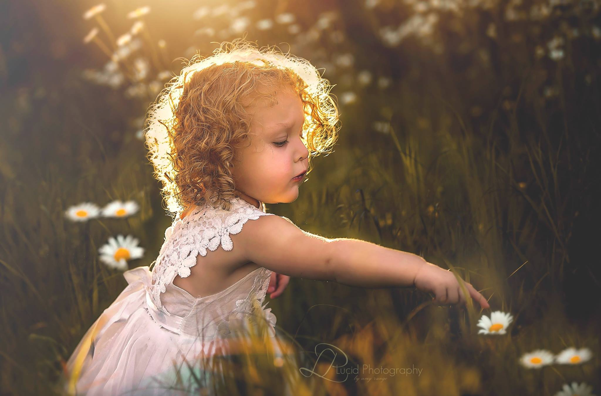 little girl and flower pictures, the daily story