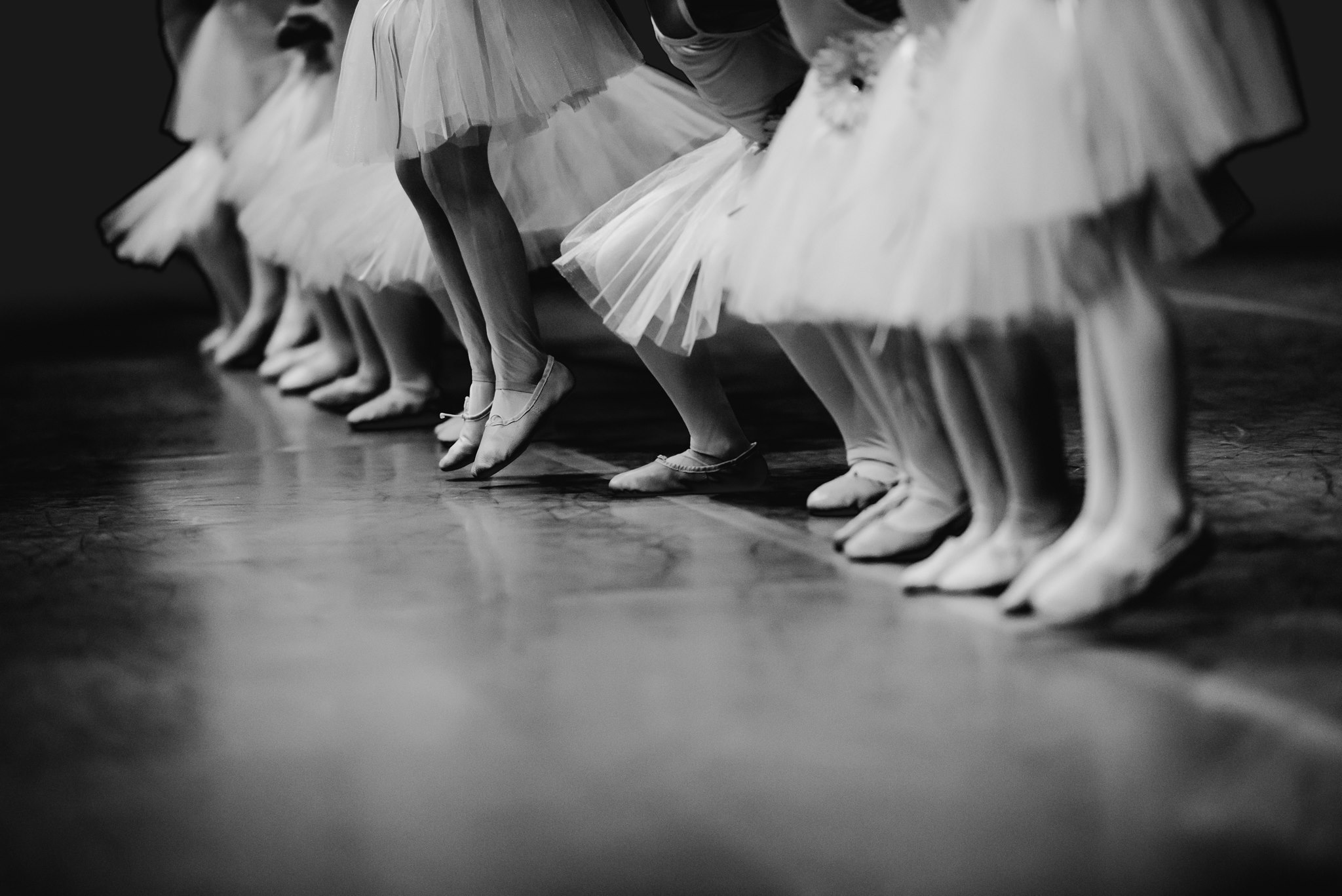 ballerinas, the daily story
