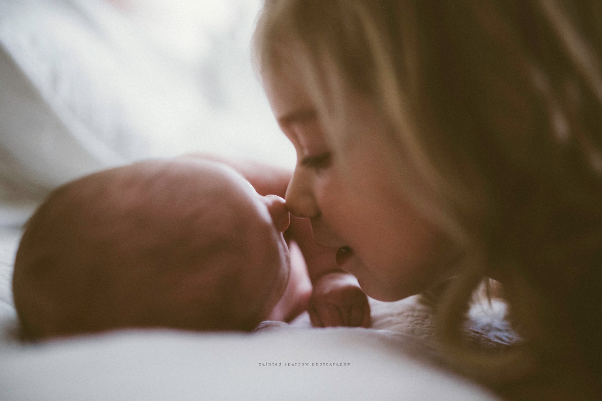 newborn sibling pictures, the daily story