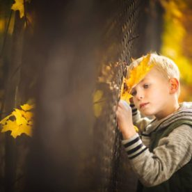 fall kid pictures, the daily story