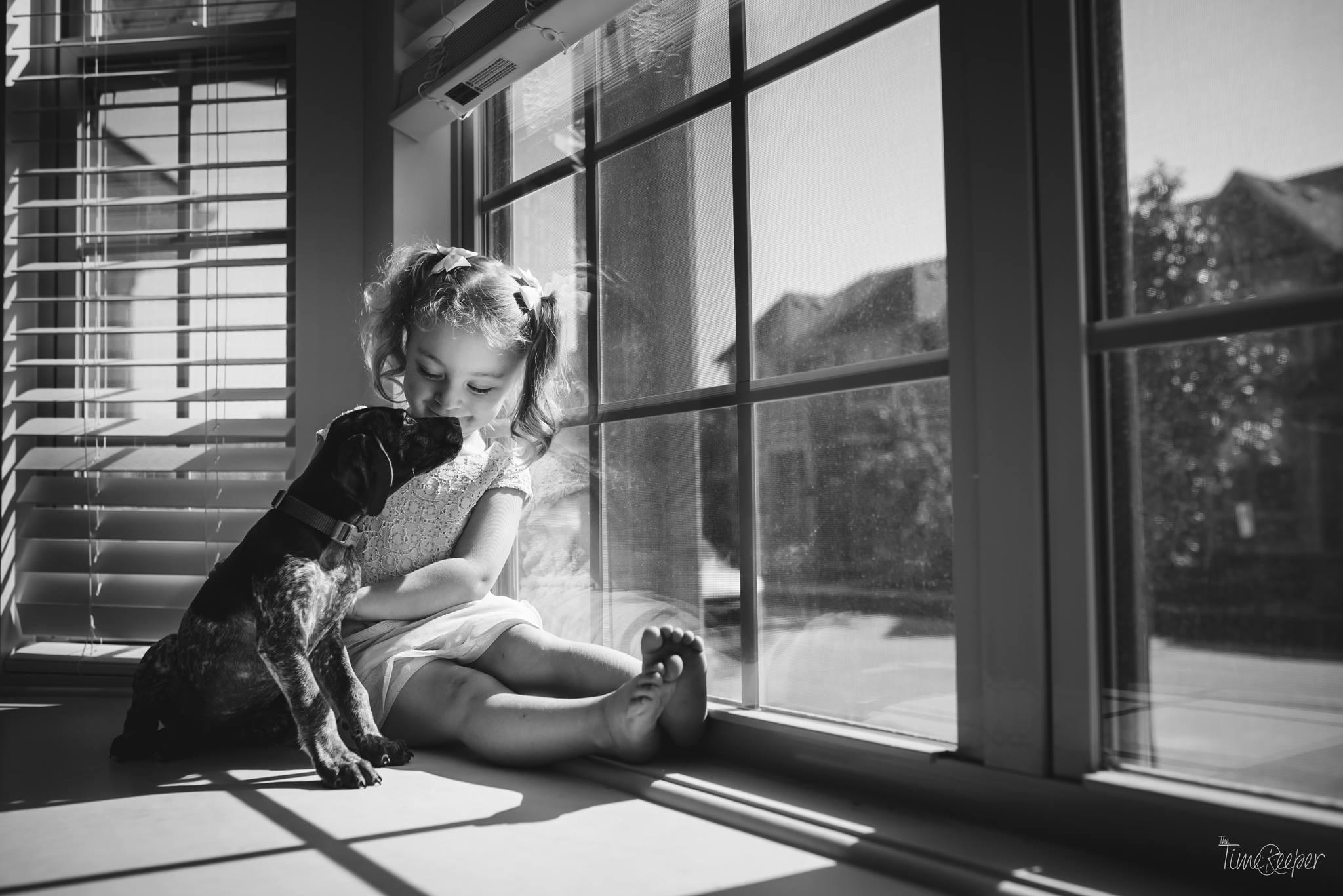 pet pictures,indoor light
