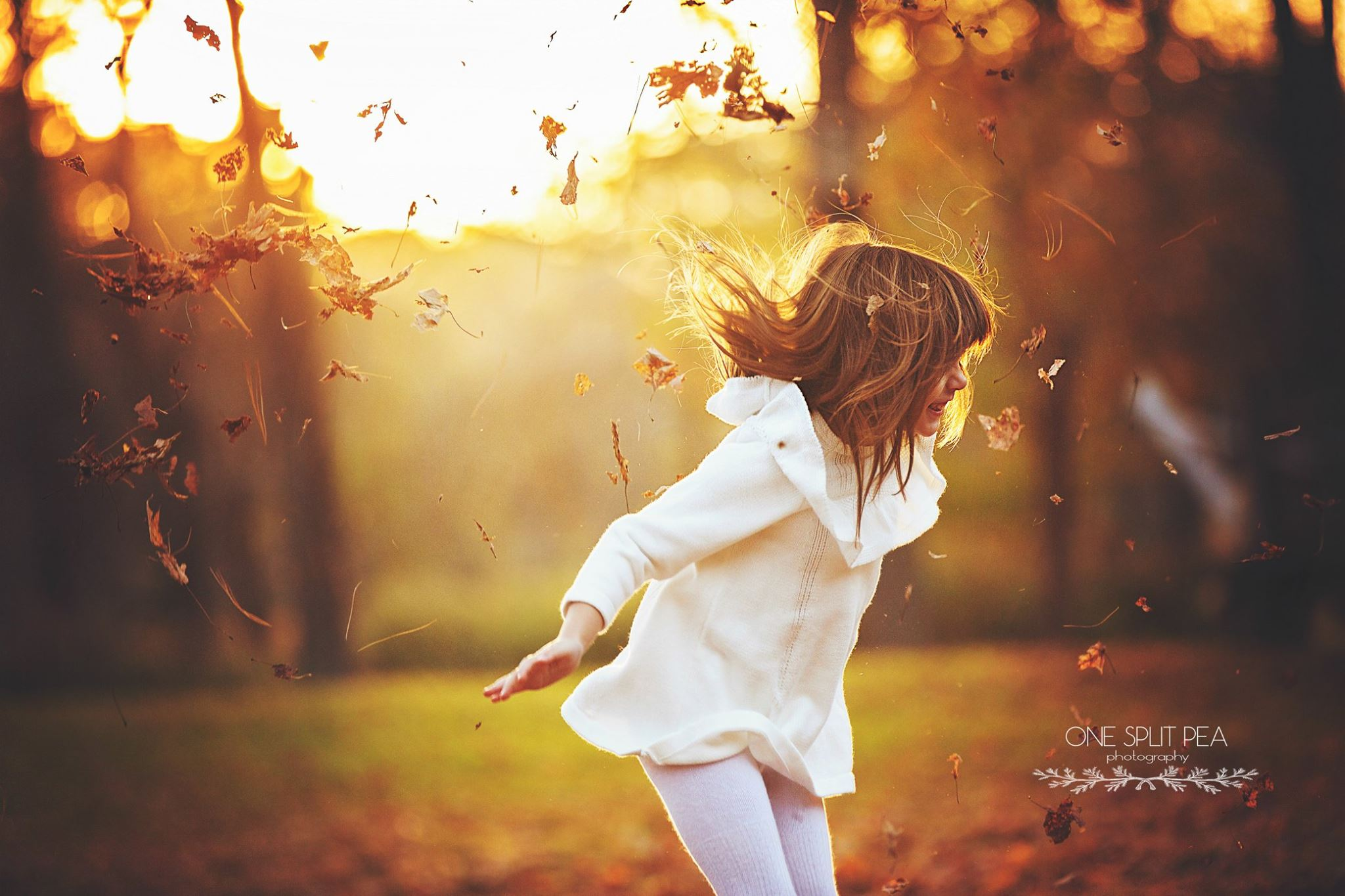 fall picture ideas, the daily story