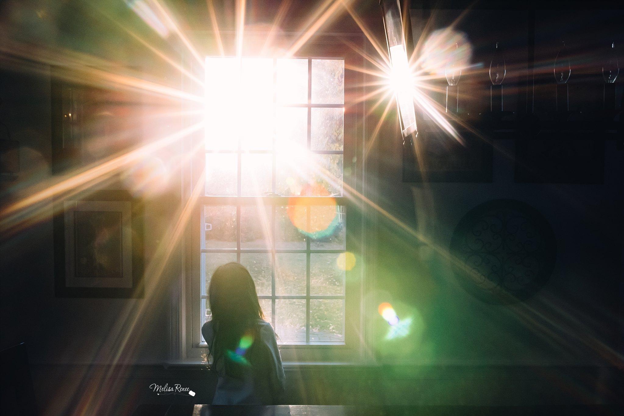 indoor light, daily fan favorite