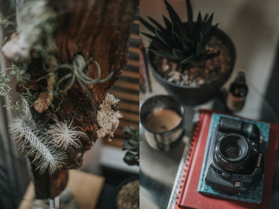 Home Decor, Intimate In-Home Lifestyle Session
