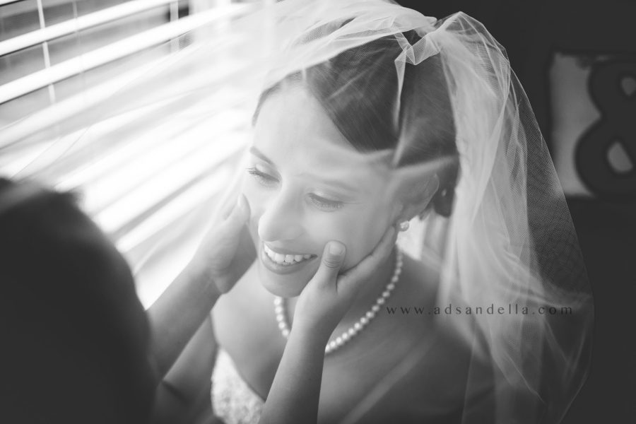 bride picture ideas, the daily story