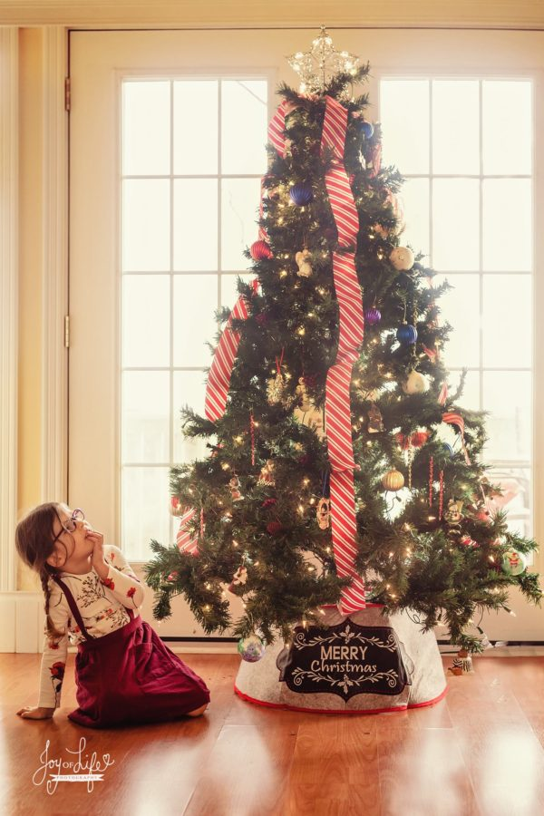 christmas picture ideas, the daily story
