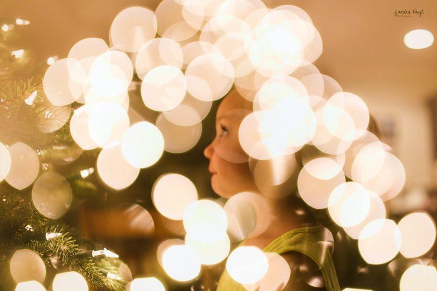 christmas lights, daily fan favorite