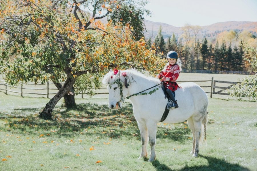 vermont in the fall, styled pony pictures, Two Princesses and Their Icelandic Pony