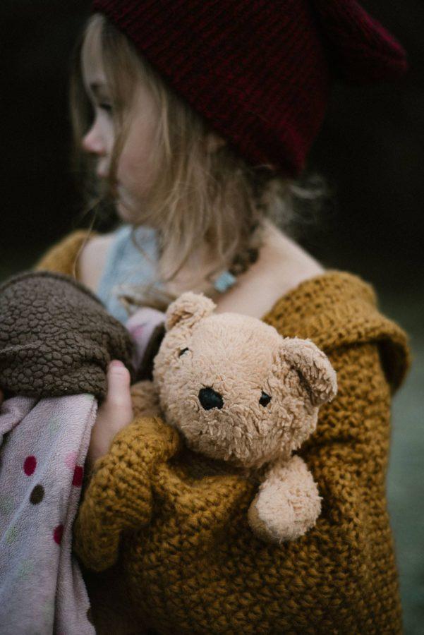 teddy bear, the daily story