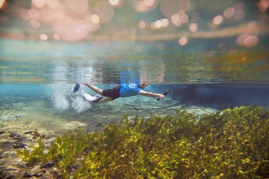 underwater picture ideas, daily fan favorite