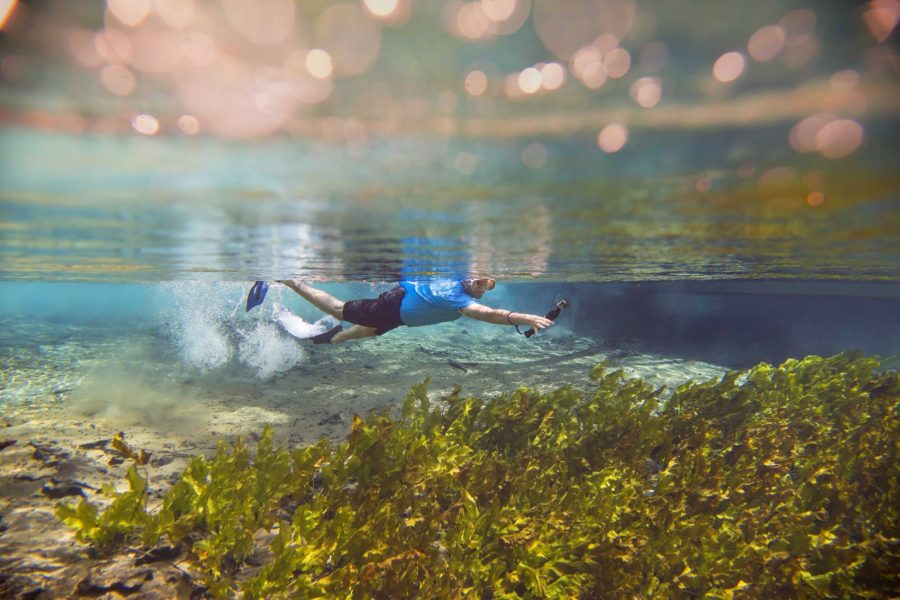 underwater picture ideas, daily fan favorite