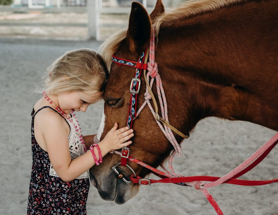 little girl with brown horse