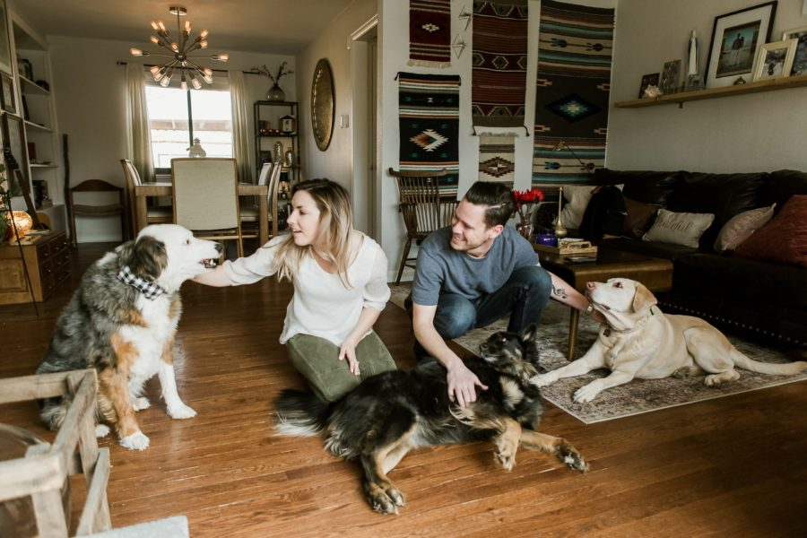 man and woman petting dogs, Romantic in Home Anniversary Session