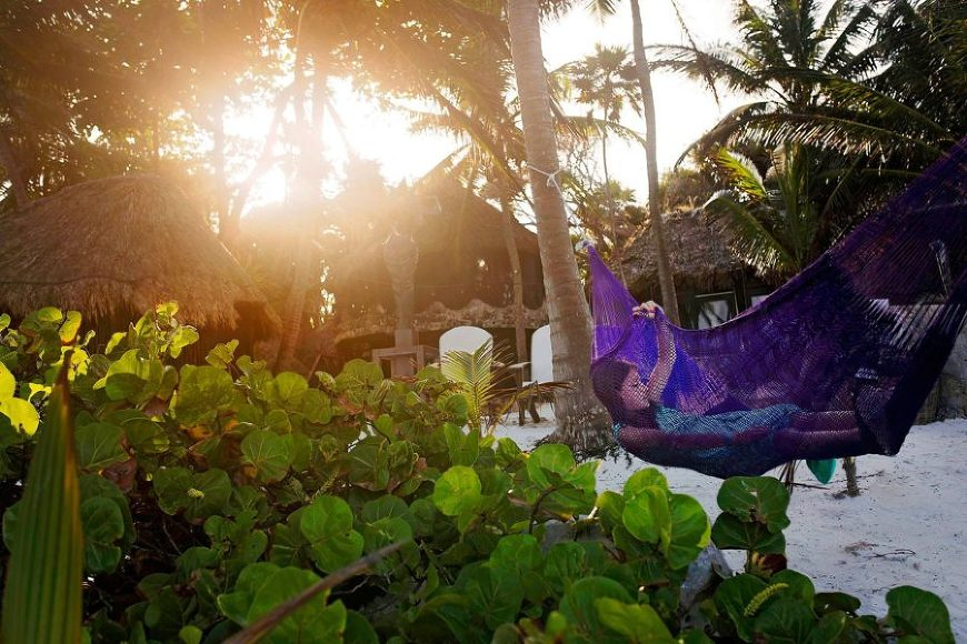 girl laying in hammock on the beach, daily fan favorite