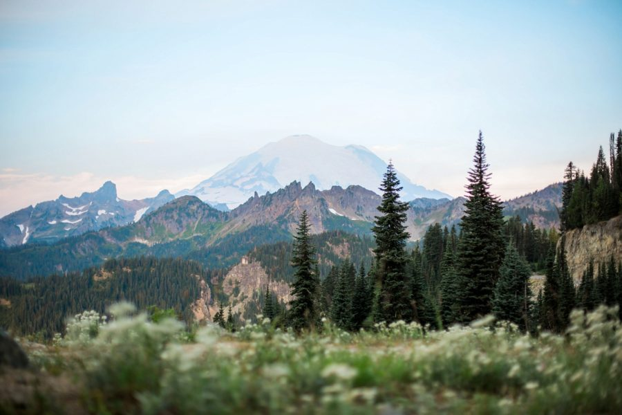 Adventurous Wilderness Anniversary Pictures in Washington