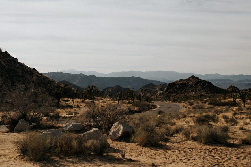 desert landscape photo, Moody Couples Session at Joshua Tree