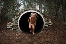Child coming out of tunnel, Daily Fan Favorite