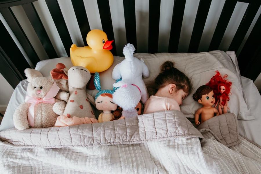 overhead shot of girl in bed with her stuffed animals, Daily Fan Favorite on Beyond the Wanderlust