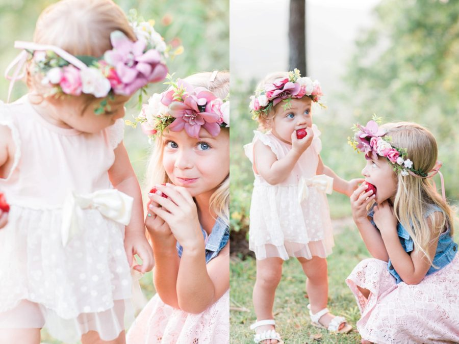 girls eating strawberries, snack break during family photos, Missouri Family Pictures with Flower Crowns