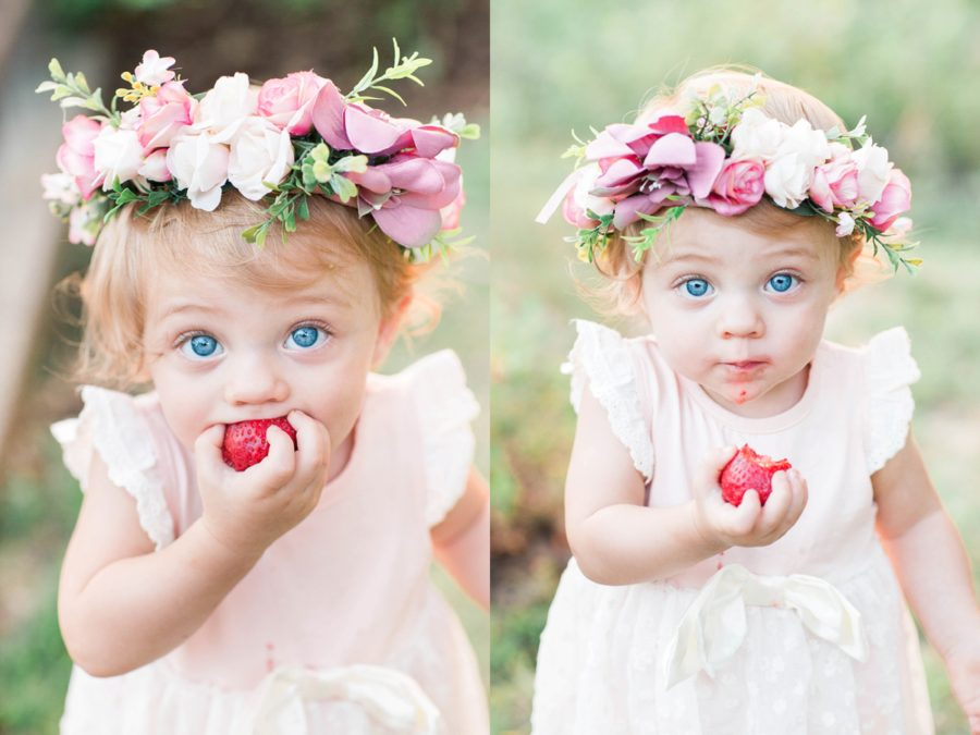 baby eating strawberry, girl with bright blue eyes, one year old with flower crown, Missouri Family Pictures with Flower Crowns