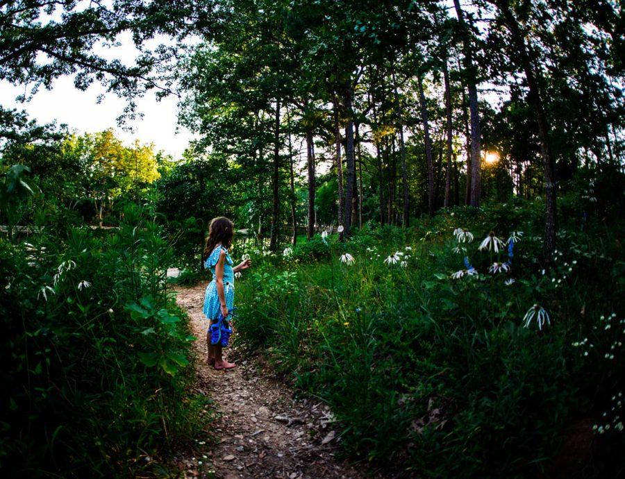 Girl picking wildflowers in woods, Daily Fan Favorite on Beyond the Wanderlust