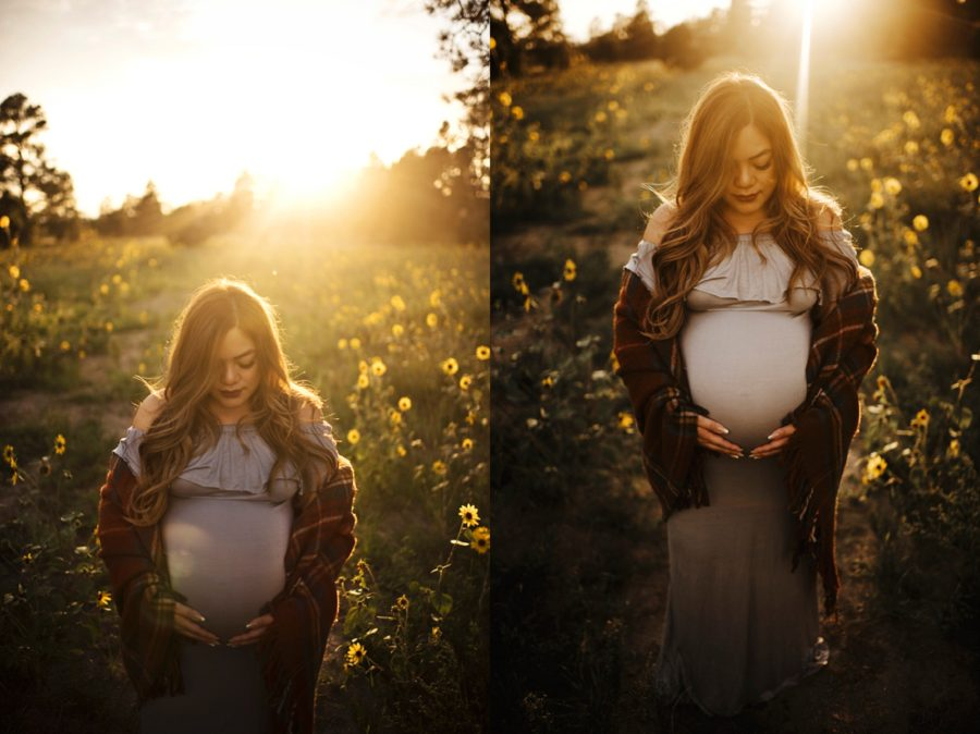 Sunlit maternity images, Woman standing in golden sunflower field, Moody Sunflower Maternity Session in Colorado