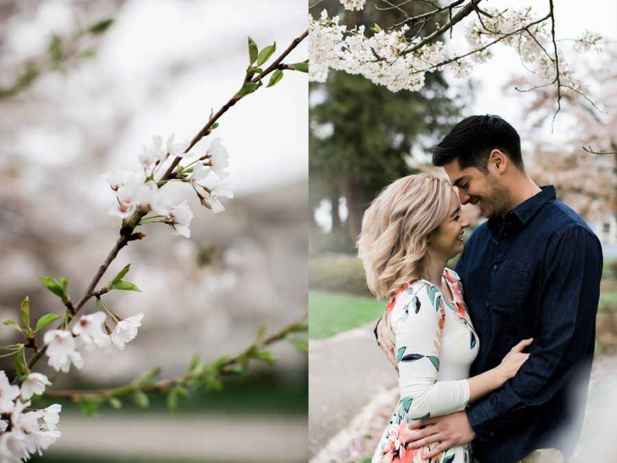 Couple laughing under cherry blossoms, Springtime Engagement Photos in Downtown Olympia