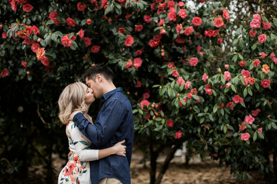 Couple kissing in front of blossoming flowers, Springtime Engagement Photos in Downtown Olympia