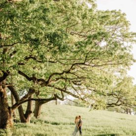 Couple standing under a tree, Erin Joyce Photography Daily Fan Favorite