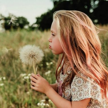 Girl blowing giant dandelion, Olive Branch Photography Daily Fan Favorite