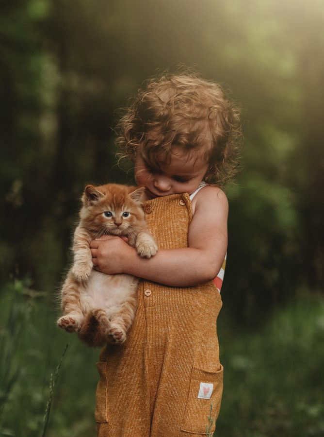 little girl holding kitten - kid portraits - farm life