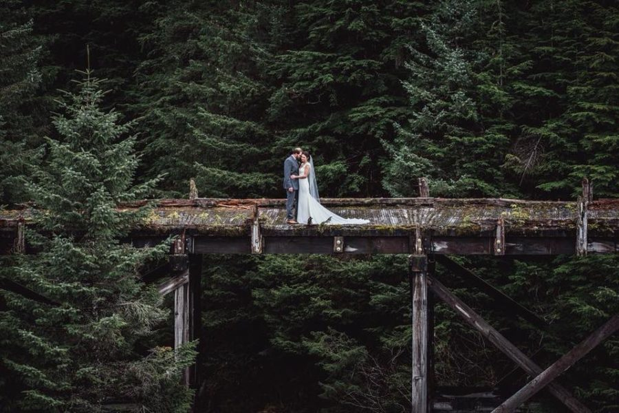 Wedding couple on bridge surrounded by pine trees, Beyond the Wanderlust Daily Fan Favorites