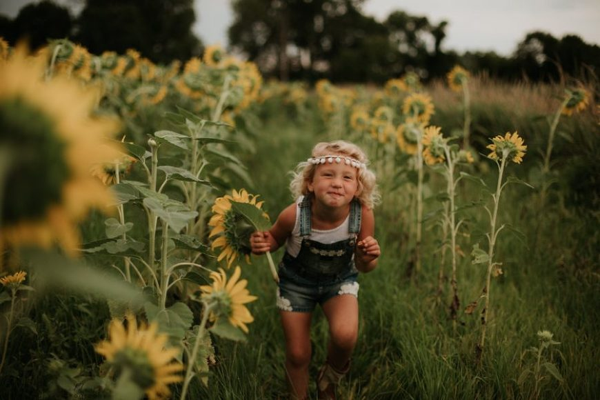 Girl sneaking through sunflower field, Wild Soul Weddings Daily Fan Favorite