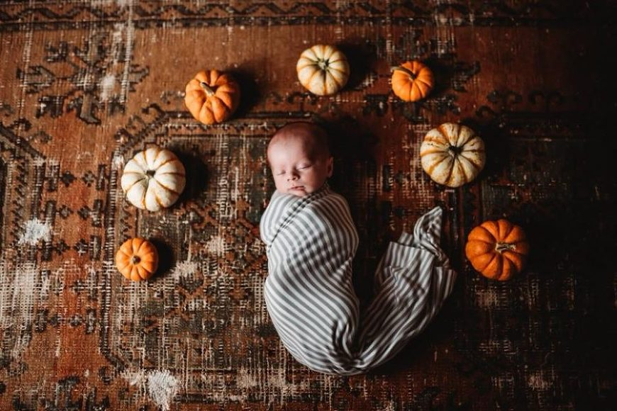 Newborn swaddled surrounded by little pumpkins, Beyond the Wanderlust Daily Fan Favorite