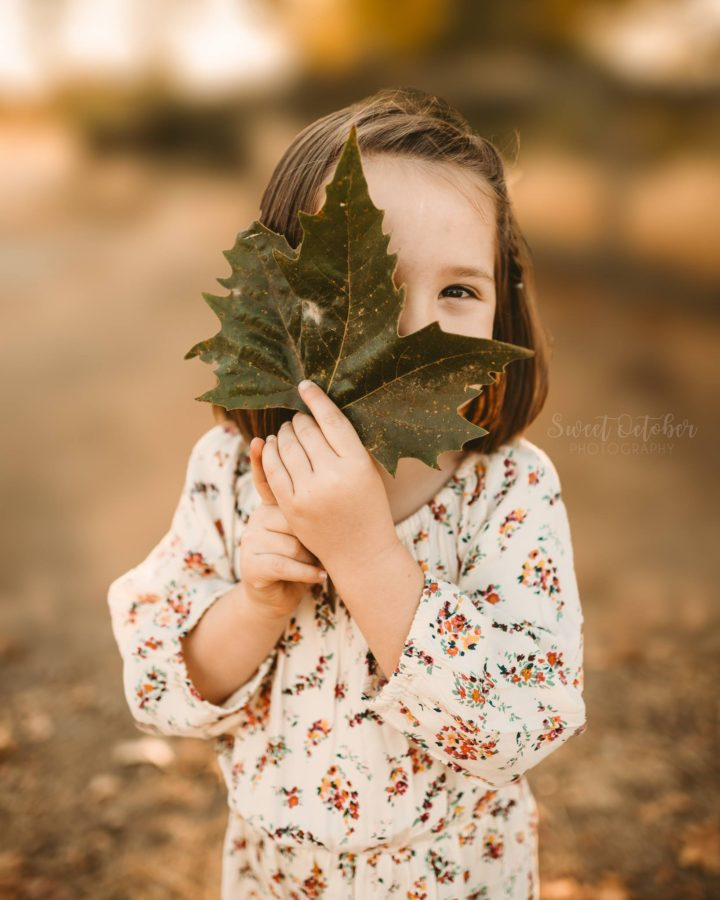 fall children pictures, little girl holding leaf, cute kid fall pictures
