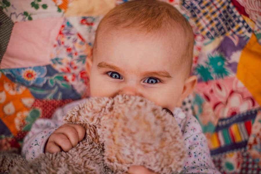 Baby squeezing stuffed animal hard just her eyes peeking out from behind, Beyond the Wanderlust Daily Fan Favorites