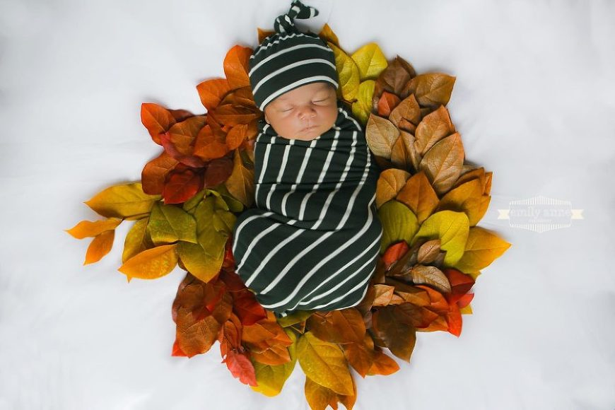 Newborn swaddled and sleeping on leaf wreath, Emily Anne Photography Daily Fan Favorite